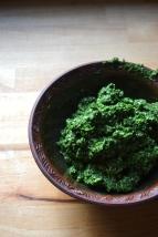 Kale Pesto with Lemon and Parmesan